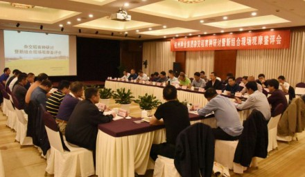 杭州种业集团科企合作论稻在杭举行