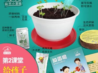咿芽小菜园给孩子礼物希望盒体验装