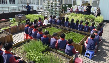 学校微农实验室,学生的户外第二课堂