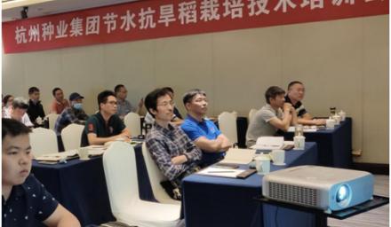 杭州种业集团以科技助推粮食增产保供能力